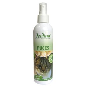 puces-chats-insecticide-environnement