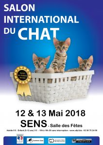 affiche-SALON-CHAT
