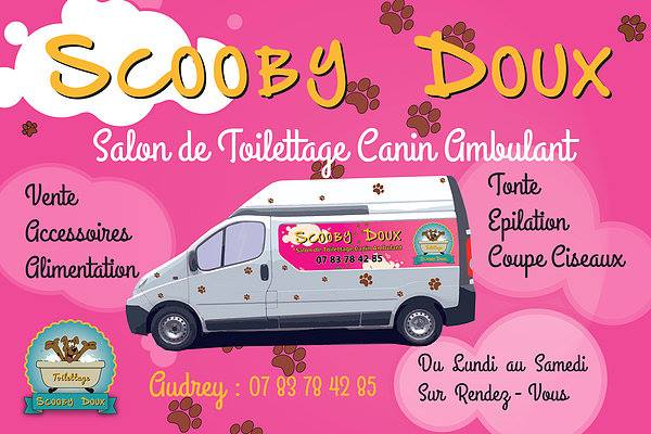 Scooby-doux-toilettage