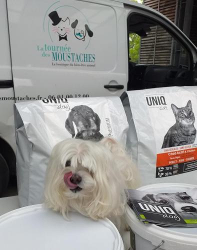Chien avec croquettes UNIQ Dog - UNIQ Cat.